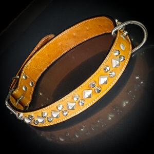 Halsband/Koppel//Sele